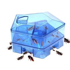 Ловушки с ядохимикатами - эффективное средство для борьбы с тараканами в квартире
